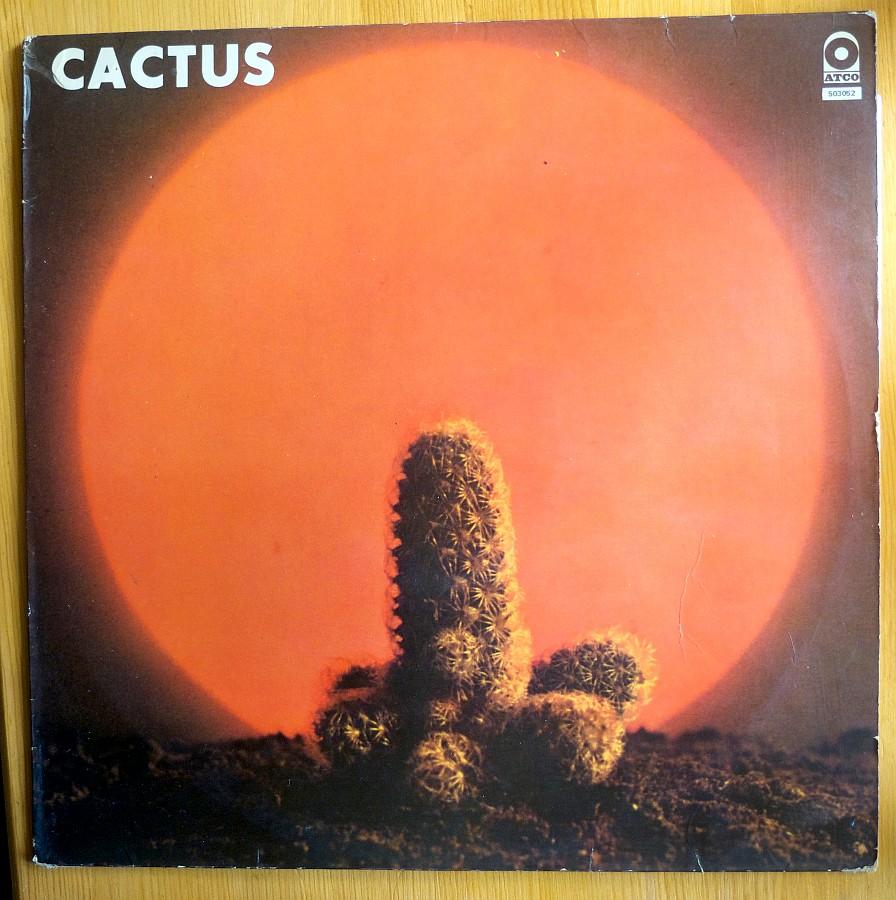 Vos derniers achats - Page 27 Cactus