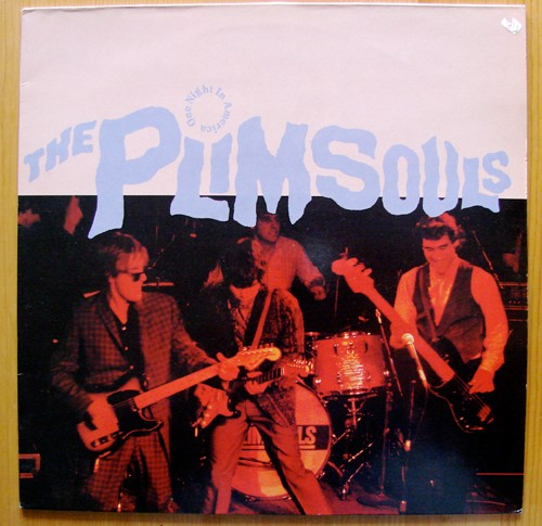 The Plimsouls pochette One Night In America